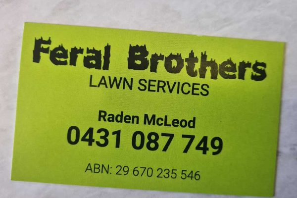 Business-cards-hervey-bay-feral-brothers